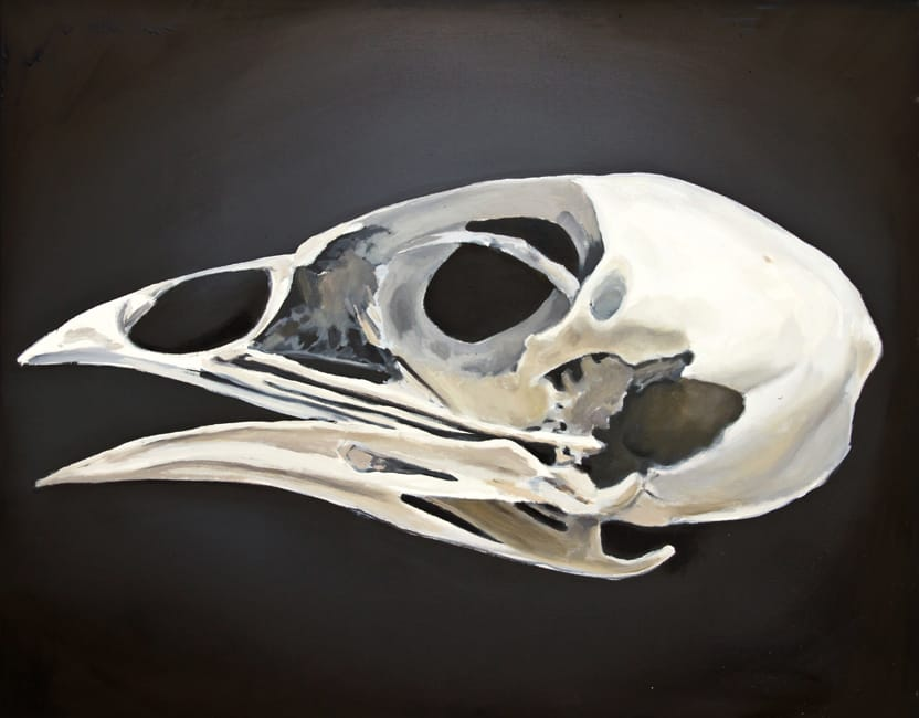 Coturnix Coturnix. Oil on canvas, 100 x 80 cm, 2014